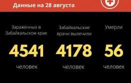 В Забайкалье от COVID-19 скончалась 63-летняя женщина.