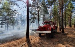 В Забайкалье нет действующих лесных пожаров