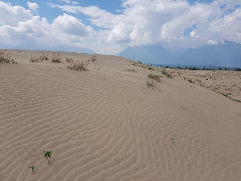 Чарские пески в Забайкалье заняли 8 место в номинации поразительных мест страны